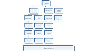 voorbeeld stageverslag administratief medewerker mijn stage