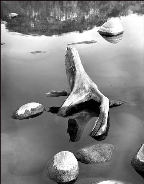 Río Cazones, Ver. (2003)