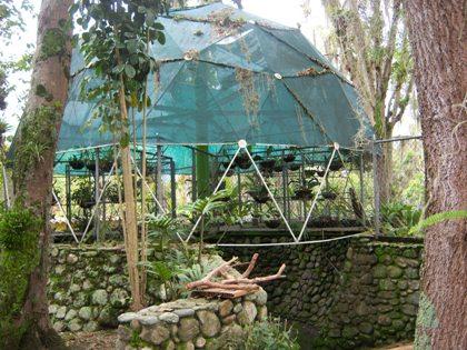 Cupula del orquideario