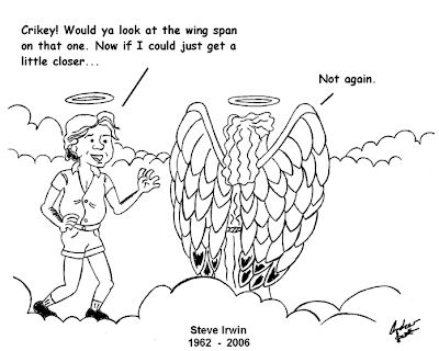 Andrew's illustrations