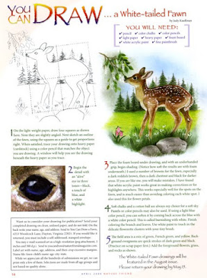 Nature Friend Magazine Review