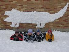 Snow Gators