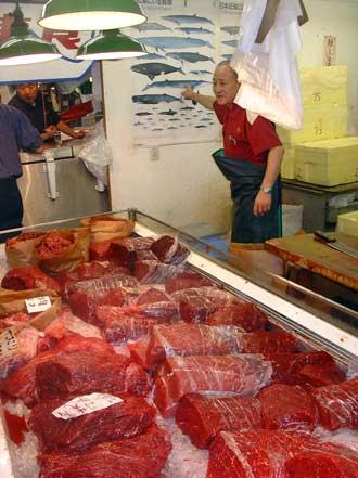 Beginilah Proses Perburuan Ikan Paus Sampai Diolah Menjadi