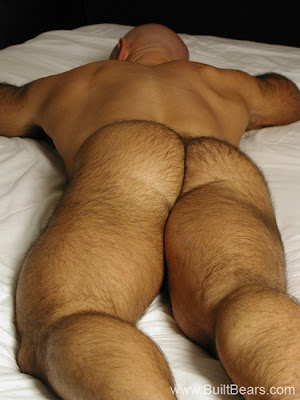 extremely hairy back