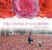 Beautiful Garden Books