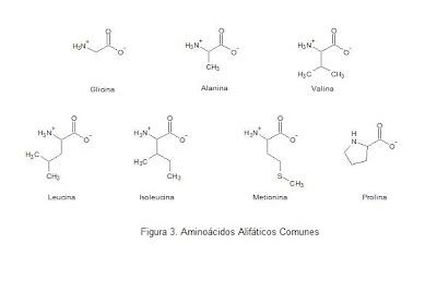 Química De Bioconjugación Reactividad De Las Proteínas