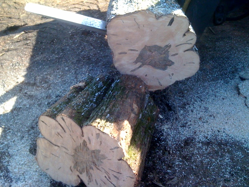 Oh Susannah 174 How To Turn A Tree Trunk Into A Table