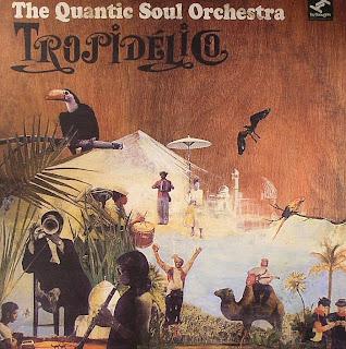 Baixar Quantic Soul Orchestra - Tropidelico 2007