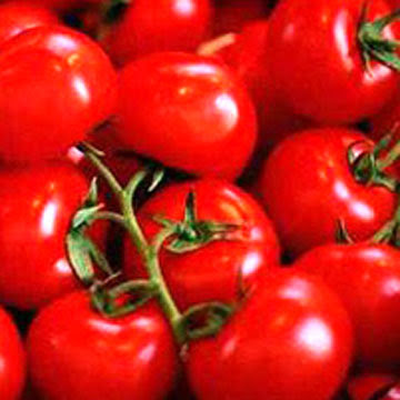 Acne-Treatment-Scar-Tomato