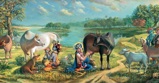 Cow As A Part Of Hinduism