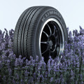 scented tires
