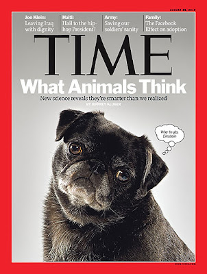 Pug Makes Cover of Time Magazine