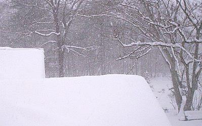 Snow January 2010 #4