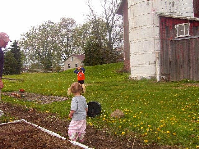 Garden helpers...