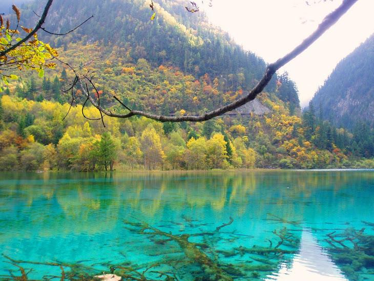 湖水正蓝(小河)