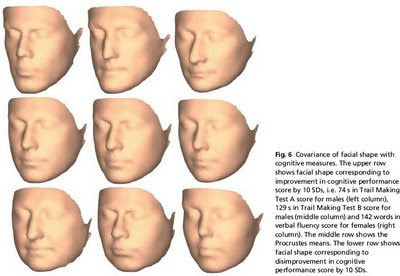 Irish Facial Structure 86