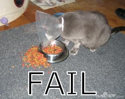 FAIL You_fail_020