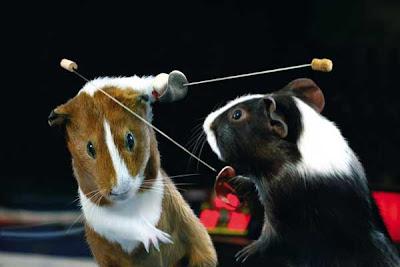 [Image: Animal_Olympics_07.jpg]