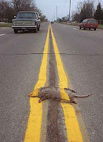 Roadkill on the Information Highway