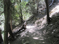 Icehouse Canyon Trail