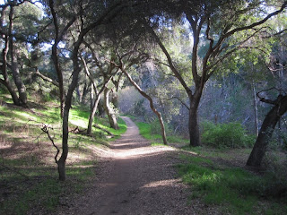 Marshall Canyon Trail