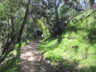Equestrians enjoy the trails in Marshall Canyon