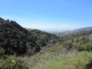 View west into Live Oak Canyon