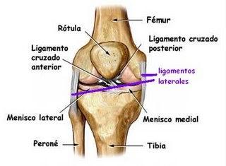 Sentarse en seiza duele - Dolor en la parte interior de la rodilla ...