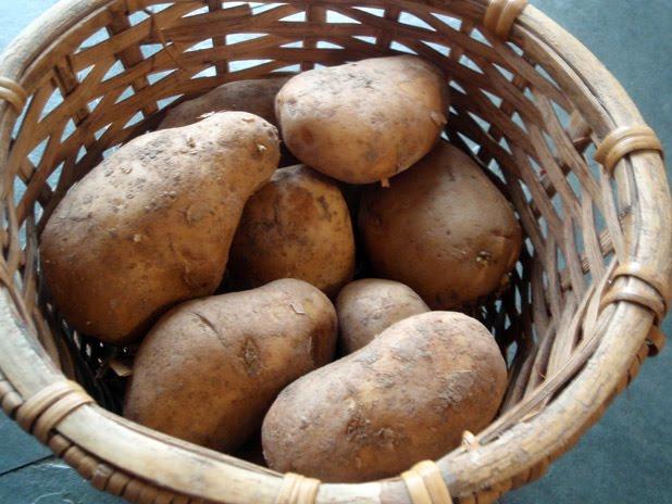 La importancia de las patatas en la dieta recetas con patatas - Prensa patatas ...