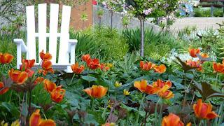 Planten un Blomen, Hamburg, Blumen, Sitz