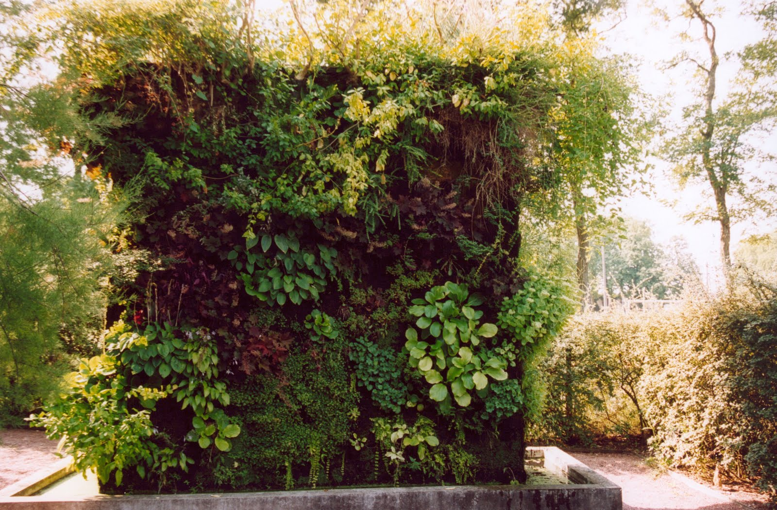 matin lumineux jardin vertical. Black Bedroom Furniture Sets. Home Design Ideas
