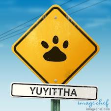 OJO Zona de Yuyi !!
