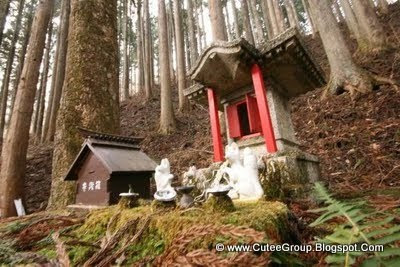 World's Oldest Hotel In Japan (Hoshi Ryokan)