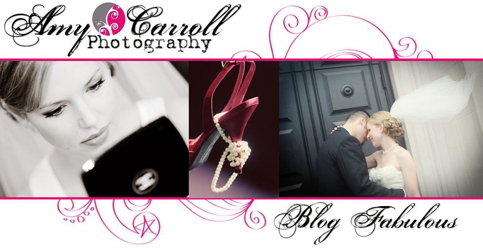 Amy Carroll Photography, LLC