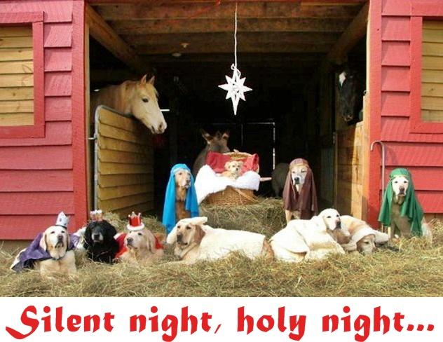 Loving for a living Silent night holy night