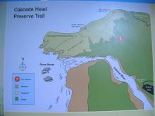 Plano de situación de Cascade Head