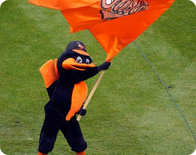 Stupid Orioles Bird