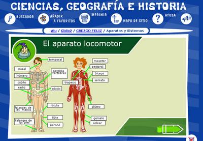 http://ares.cnice.mec.es/ciengehi/b/00/animaciones/a_fb05_06.html