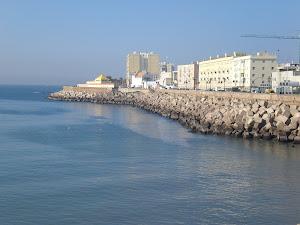 CAMPO DEL SUR Cádiz
