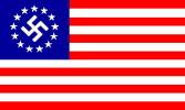 America Nazi Flag