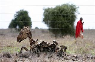Reuters: Kenia