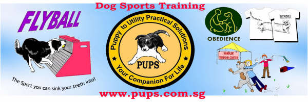 PUPS Activities and Events