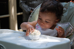 First Birthday-First Cupcake