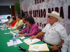 Presidenta de la CNC en Veracruz