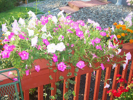 I love flower pots on the deck