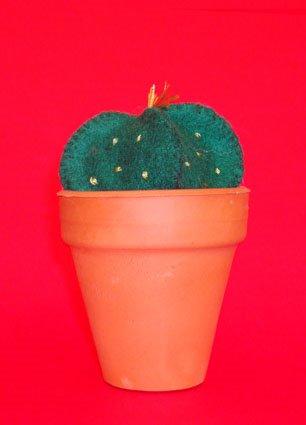 [cactus2.jpg]