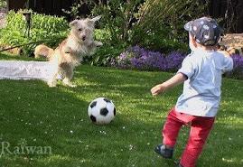 เด็กมีพัฒนาการในการเล่น