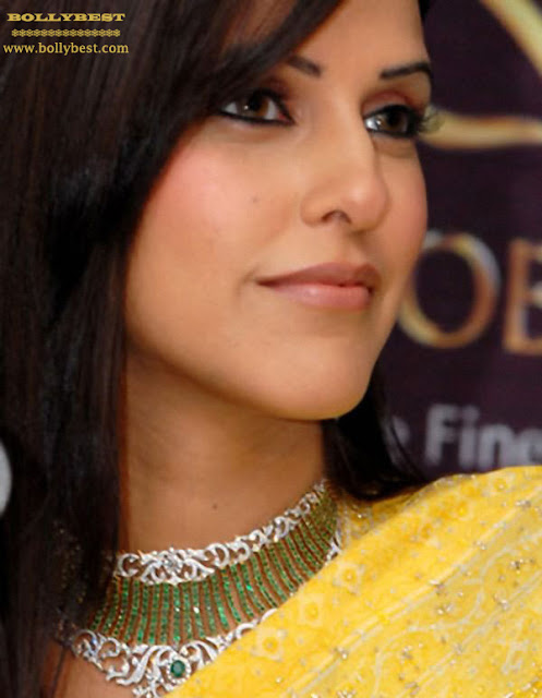Neha Dhupia in a Yellow Saree