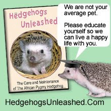 New DVD For Hedgehog Owners