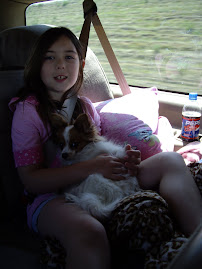 Tink in my lap in the car